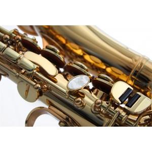 waldman_sopro_saxofone_wscgfol_detail4.jpg